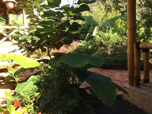 vue du jardin zen.JPG