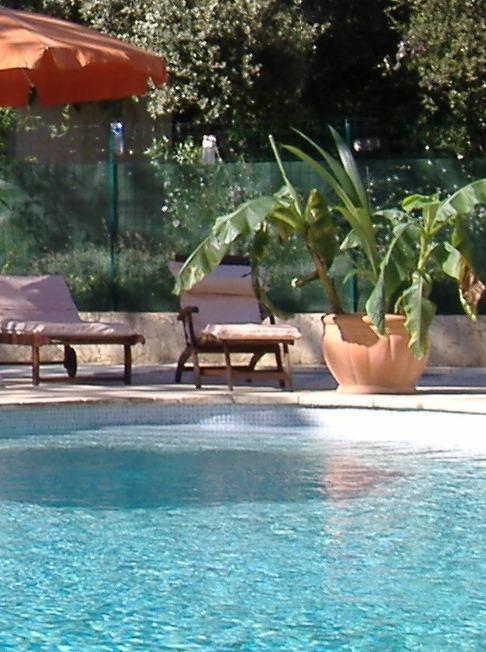 vue_piscine_en_bois_modifié_modifié