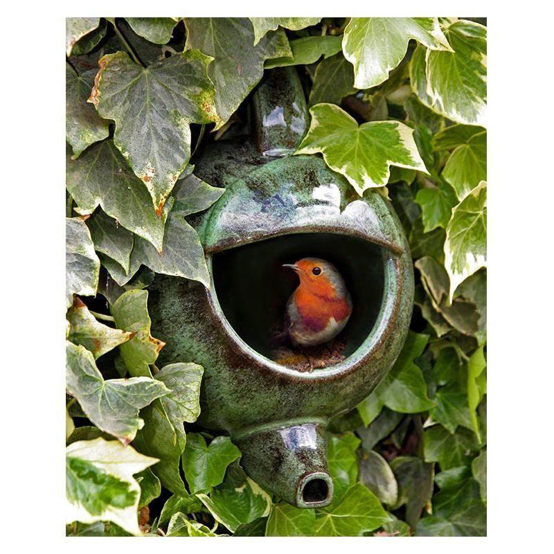 anduze oiseau 10.jpg
