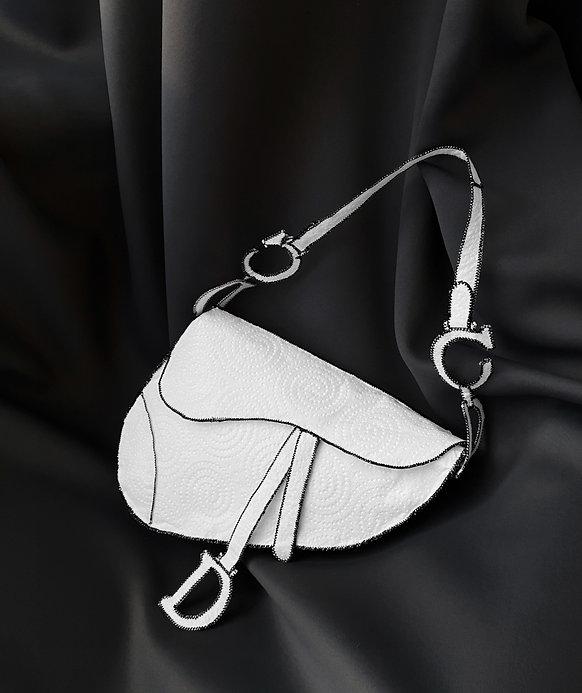 Dior Saddle 01.jpg