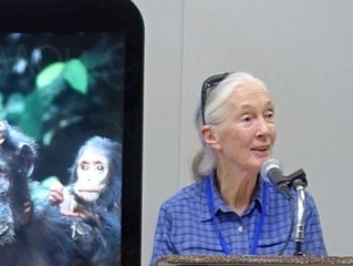 China: Environmental Protection Leader - Jane Goodall Foundation