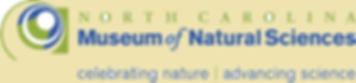 bckgncmns-logo-tagline.jpg