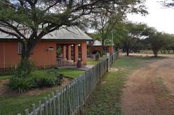 Blesbok Side View