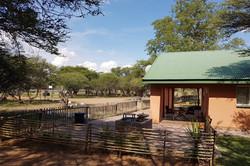 Kudu Front View