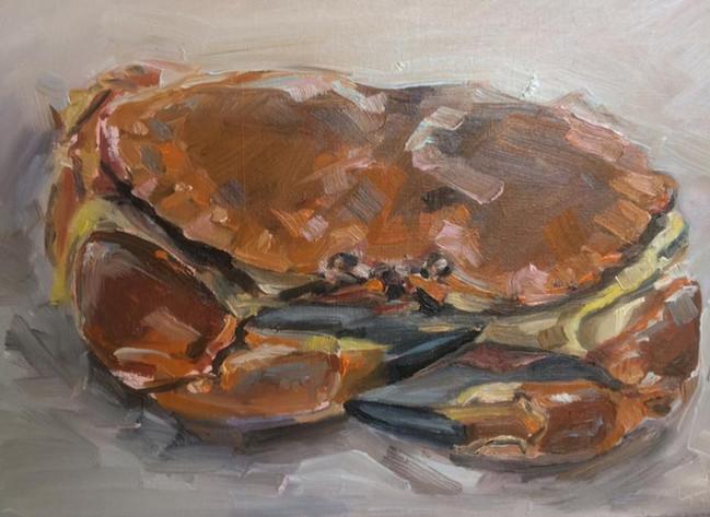 Lulworth Crab