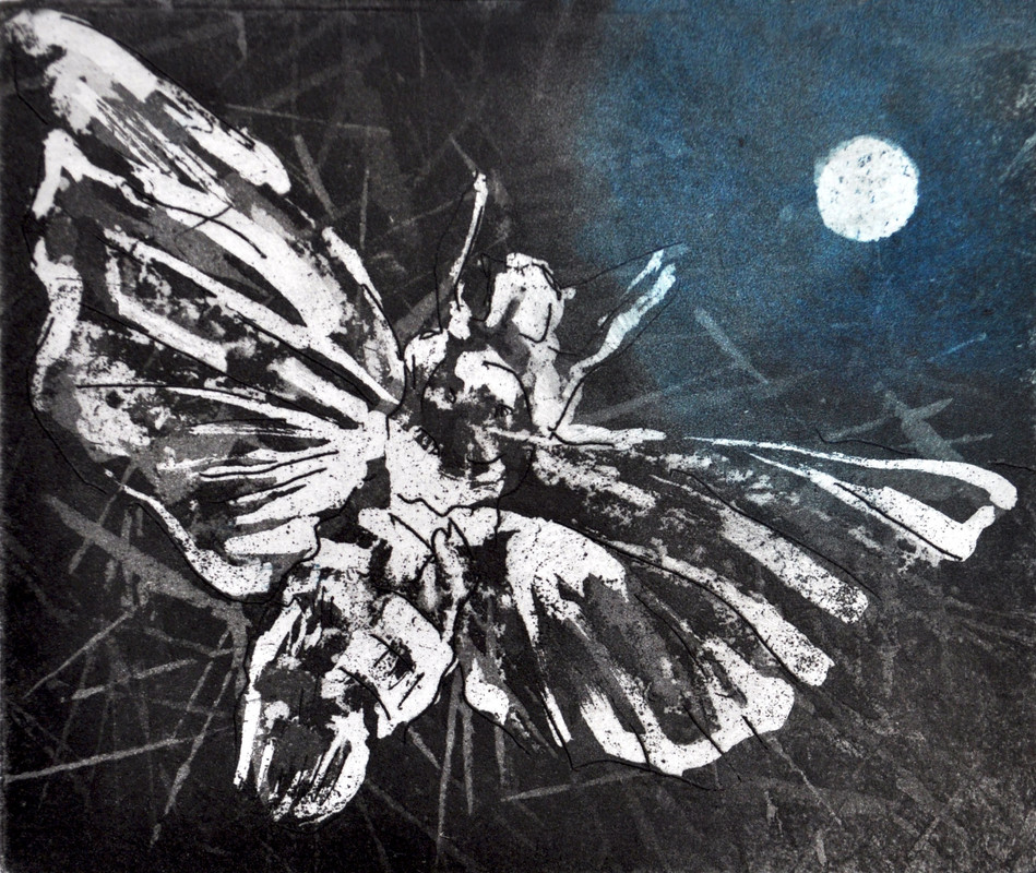 Moonlit Moth