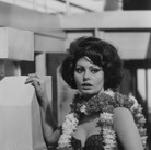 """Sophia Loren on the set of """"A Countess from Hong Kong,"""" 1966  Pinewood Studios, Buckinghamshire  vintage gelatin silver print image size > 14.5 x 9.5 inches  Photograph by Hatami (1928-2017)"""