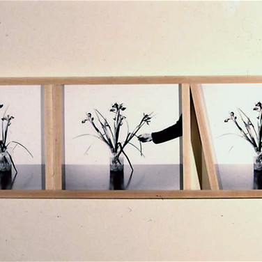 Roger Welch Flower Arrangement, 1999 gelatin silver prints mounted on museum board, maple wood 12 x 32 inches Private collection
