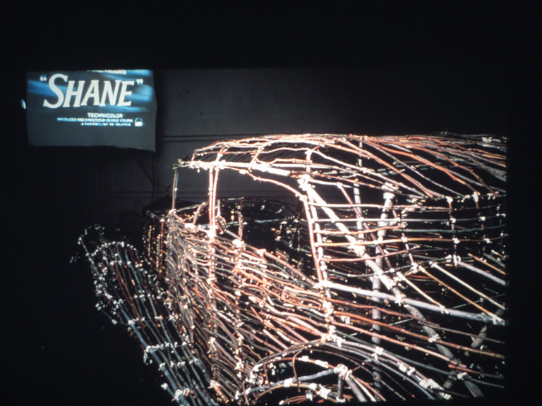 ROGER WELCH Drive-In (1980) Twigs, tree branches (willow, maple, spruce, pine), bamboo, twine, adhesive to bind knots, 16 mm film with continuous projection system Car size: 62 x 70 x 200 inches | 157.5 x 177.8 x 508 cm  Exhibited at PS 1, Long Island City, New York and the Tamayo Museum, Mexico City Collection of the Tamayo museum, Mexico City, Mexico
