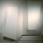 CHARLES HINMAN (b. 1932)  Dyad, 2013  acrylic on shaped canvas  104 x 104 x 10 inches