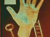 JENNY LYNN  My Left Hand  1994  color duplex print  24 x 30 inches