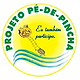 Projeto Pé-de-Pincha - UFAM
