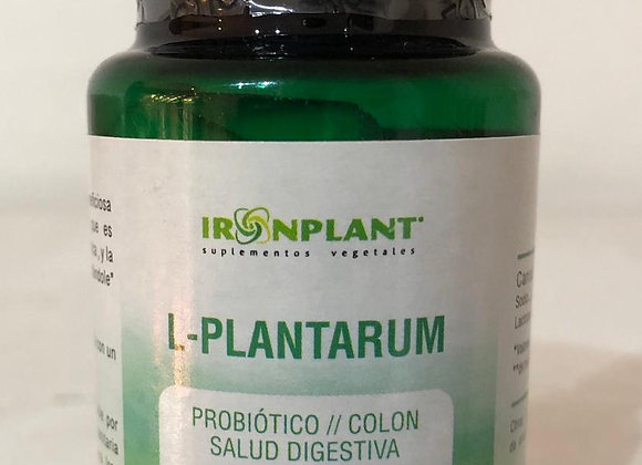 L-Plantarum Probiótico Colon