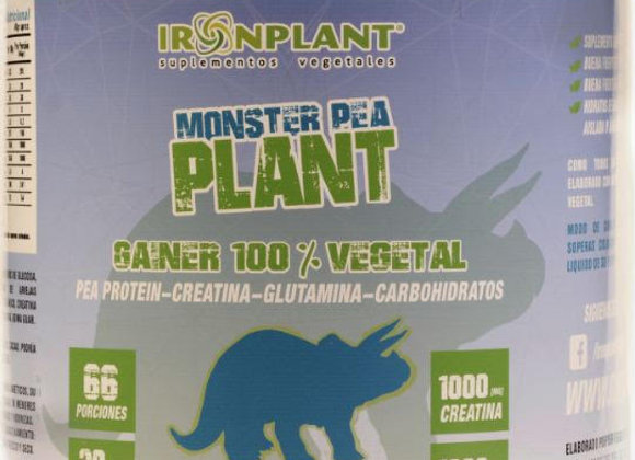 Oferta 2 Monster Pea Plant Cacao (4 kg c/u)