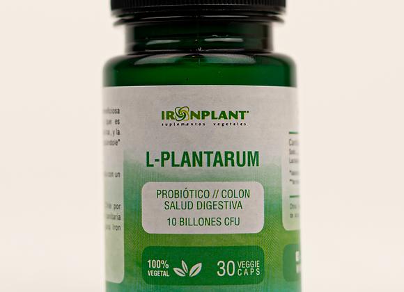 L-Plantarum Probiótico Colon
