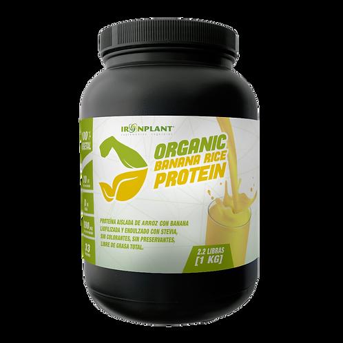 Proteína de Arroz Iron Plant Sabor Banana