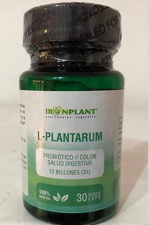 L-Plantarum