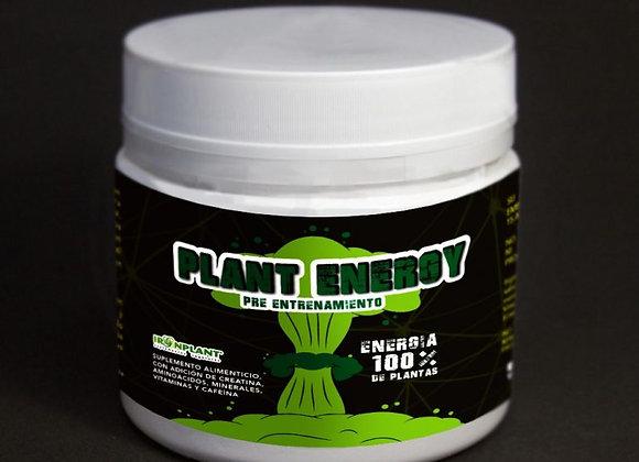 Pre-Entrenamiento Plant Energy