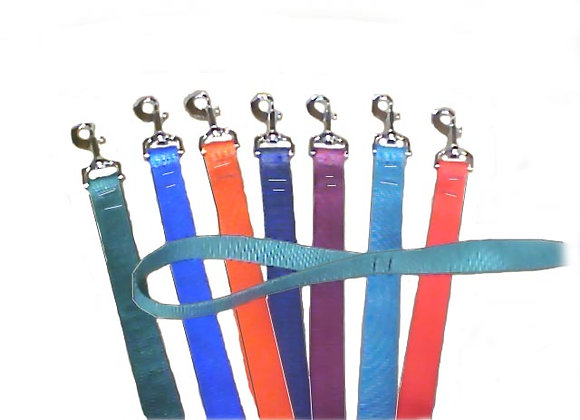 "NDL21 3/4"" DOG LEAD"