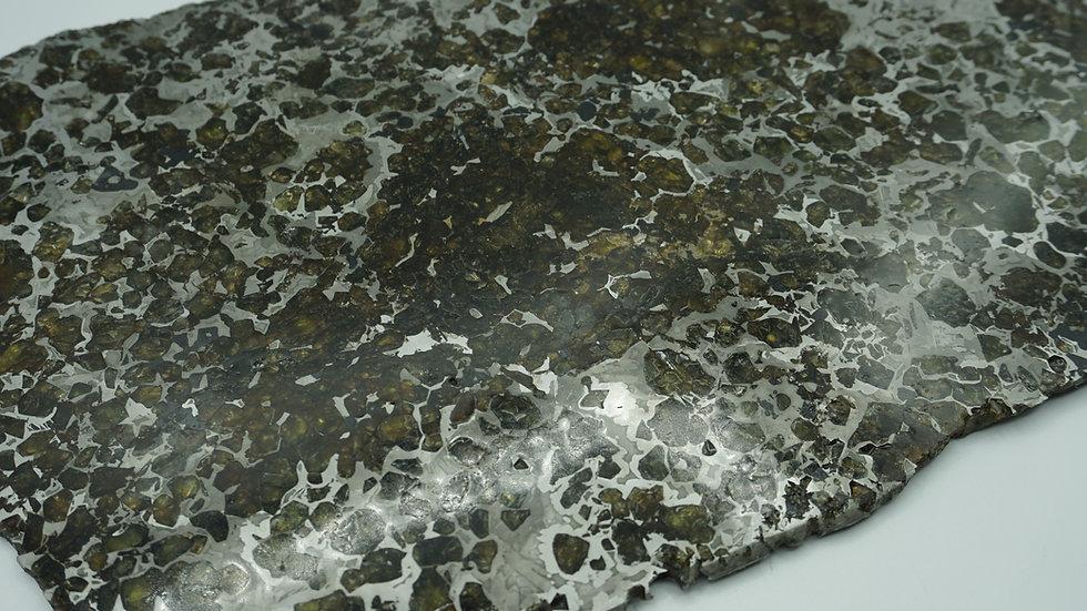 Seymchan Double Polished Museum-Quality Specimen 1248 grams