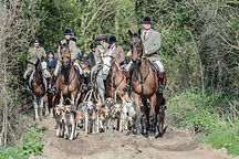 ratcatcher stephen with hounds.jpg