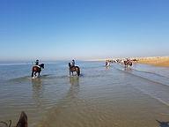 beach ride 2.jpg