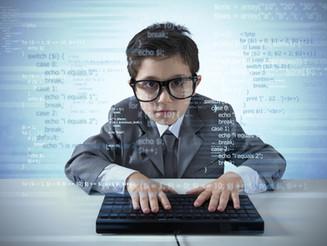 Software, potencial laboral y económico por explotar: Situación actual y posibilidades