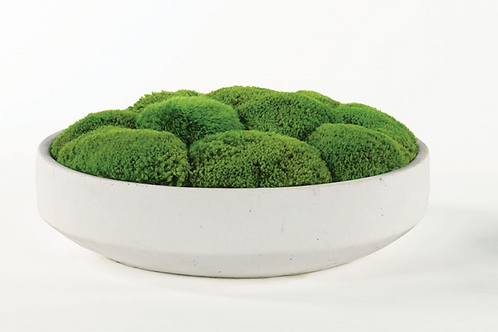 White Moss Bowl
