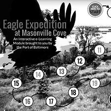 eagle%2520exp_edited_edited.jpg
