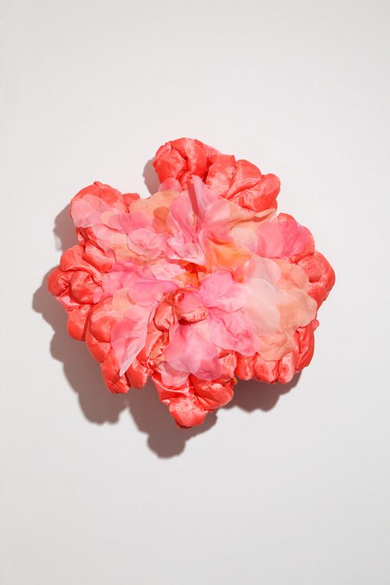 꽃별 (Flower Astroid)