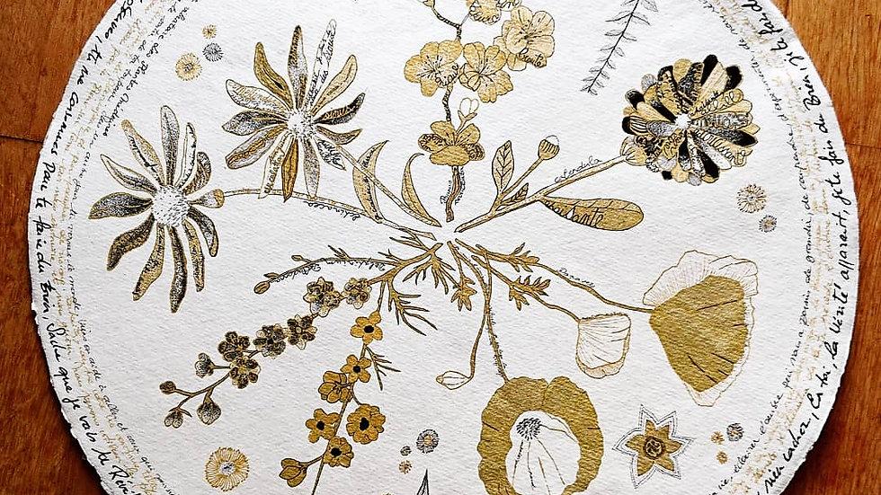 Les plantes médecines, création originale