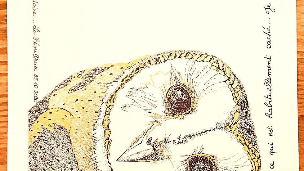 """""""Dame Clara"""", imprimé Signature vibratoire"""