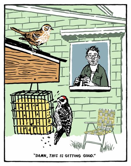 The Quarantine Birder