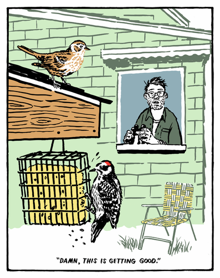 The Quarantine Birder