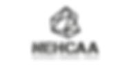 NEHCAA-Logo_Joyería-Sostenible.png
