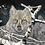 Thumbnail: Eyes in the Mist Wolf Tee