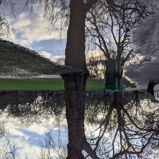 Reflection in Kennington Park.jpg