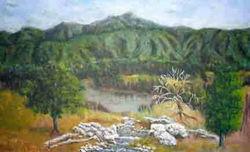 mtcreek-landscape