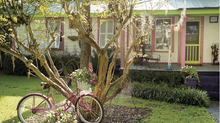 You'll Fall In Love With Bluffton, South Carolina