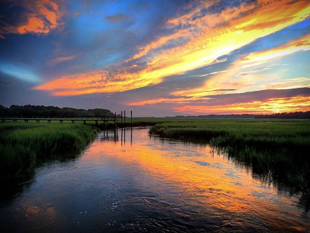 The Miles of salt marsh serve as the Atlantic's nursery