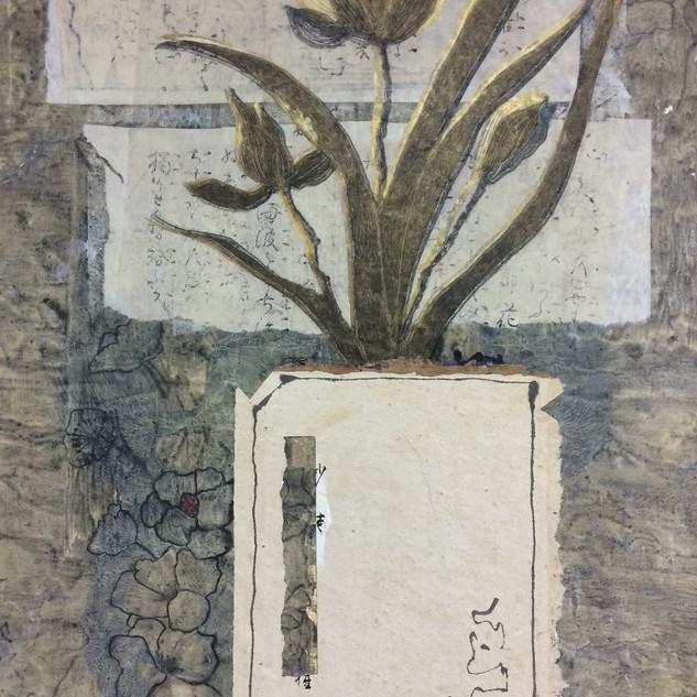 Orchid No 4.jpg