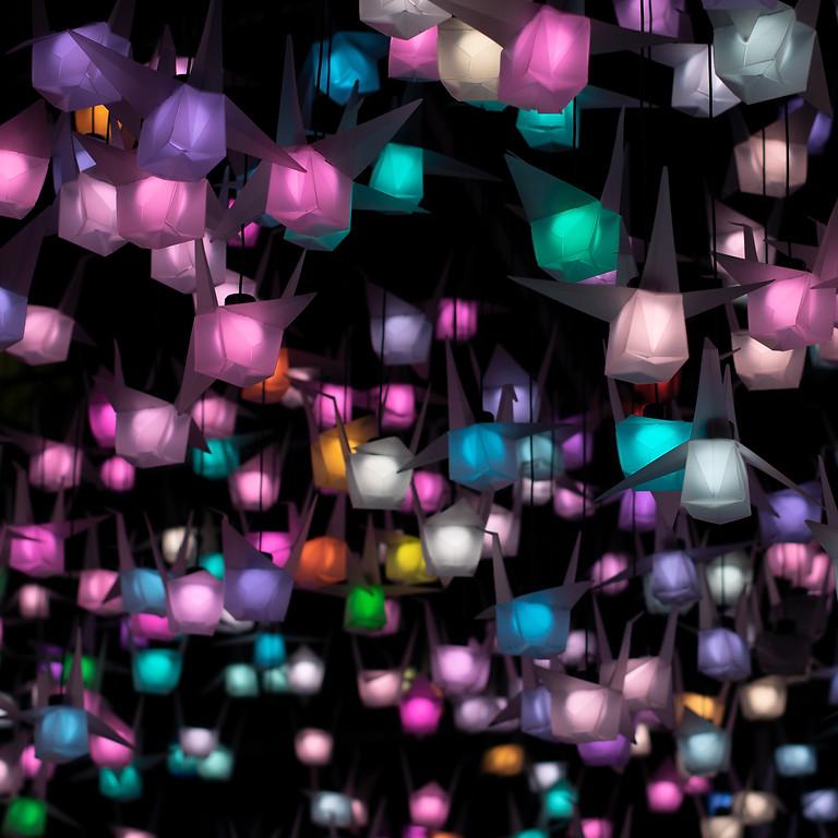 Lantern and Light Parade  **POSTPONED UNTIL APRIL 2022 **
