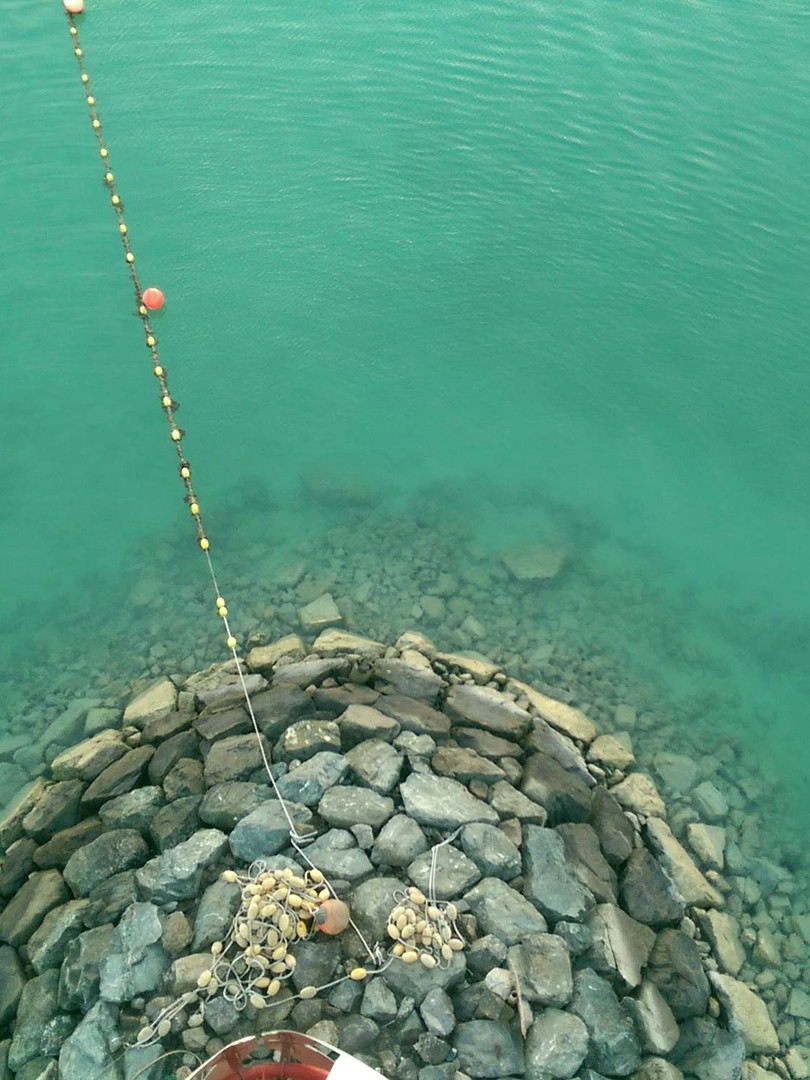 Abu Dhabi Waters
