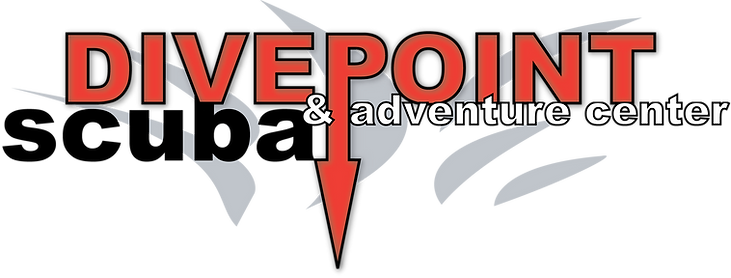 Divepoint-Logo.png