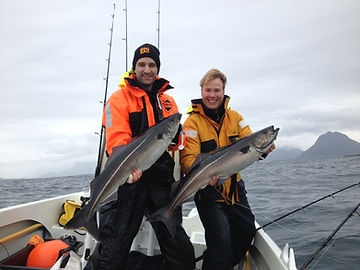 Fishing seafishing boat Saithe Coalfish Sei, Midnight sun arctic light cabins accommodation, Hva kan vi gjøre i Nord Norge Vesterålen Bø Lofoten Aktiviteter Opplevelser