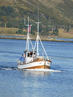 Fisketur, Fishing, Boat for rent, Angeln, Fische