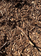 Recycled Mulch.JPG