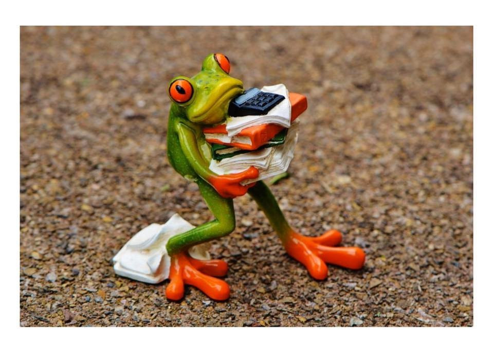 Frog%20with%20papers%20and%20books_edite
