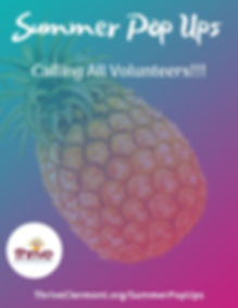 2020 Summer PopUps Volunteer Background