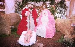 Decoración floral navidad